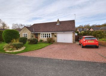Thumbnail 4 bed bungalow for sale in Chesterwell, Swarland, Morpeth