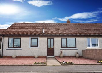 Thumbnail 2 bed terraced bungalow for sale in Dominion Road, Gretna
