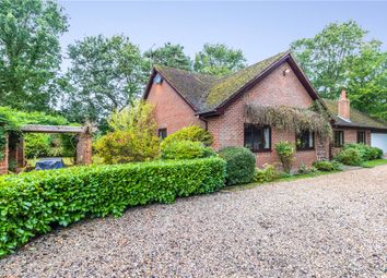 Thumbnail 4 bed bungalow for sale in Nine Mile Ride, Finchampstead, Wokingham