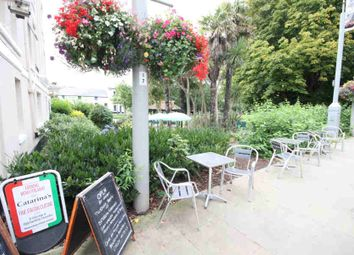 Thumbnail Restaurant/cafe for sale in Lawn Hill, Dawlish