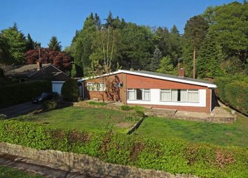 Thumbnail 3 bedroom detached bungalow for sale in Pine Bank, Hindhead