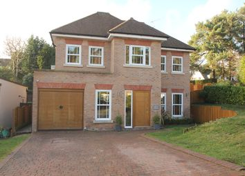 Thumbnail 6 bed detached house for sale in Birch Vale, Cobham