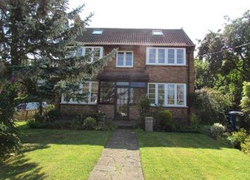 Thumbnail 4 bed detached house to rent in Church Way, Denton, Northampton
