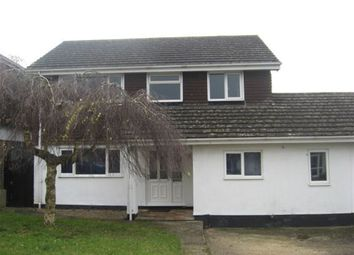 Thumbnail 4 bed property to rent in Woodstock Road, Burton, Christchurch