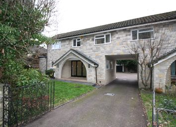 Thumbnail 4 bed semi-detached house to rent in Hind Street, Ottery St Mary, Devon