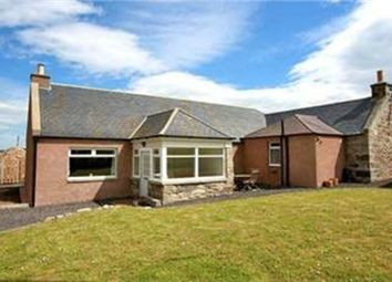 Thumbnail 3 bed detached bungalow for sale in Ellon, Ellon, Aberdeenshire