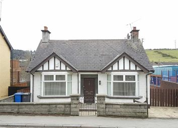 Thumbnail 3 bed detached bungalow to rent in Lisburn Road, Ballynahinch