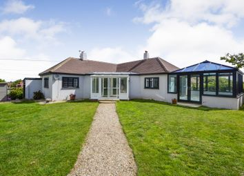Thumbnail 3 bed detached bungalow to rent in Shepherds Way, Fairlight