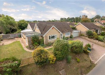 Thumbnail 3 bedroom detached bungalow for sale in Lambrook Road, Shepton Beauchamp, Ilminster, Somerset