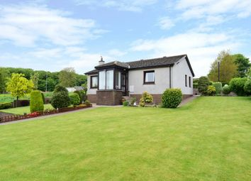 Thumbnail 3 bed detached house for sale in Cairndale, Greystone, Carmyllie