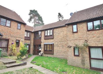 Thumbnail Studio to rent in Bluebell Rise, Lightwater, Surrey