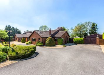 Thumbnail 4 bedroom detached bungalow for sale in Ogbourne St. George, Marlborough, Wiltshire