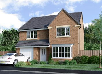 "Thumbnail 4 bedroom detached house for sale in ""Douglas"" at Bryning Lane, Warton, Preston"