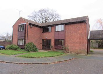Thumbnail Studio to rent in Petit Couronne Way, Beccles