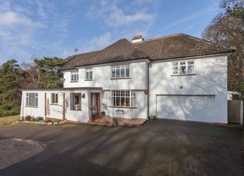 Thumbnail 5 bed detached house for sale in South Avenue, Thorpe St Andrew, Norwich