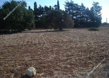 Thumbnail Land for sale in Mazotos, Larnaca, Cyprus