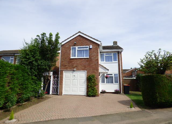 Thumbnail 6 bed detached house to rent in Chantry Avenue, Bedfordshire