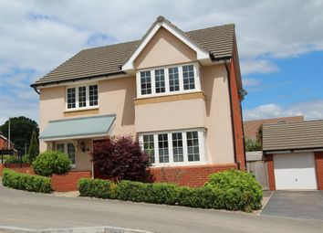 Thumbnail 4 bed detached house for sale in Pavey Run, Ottery St. Mary