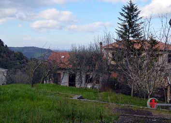 Thumbnail 3 bed detached house for sale in Centro Storico, Castiglione D'orcia, Siena, Tuscany, Italy