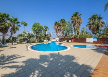 Thumbnail 1 bed apartment for sale in Livadia, Larnaca