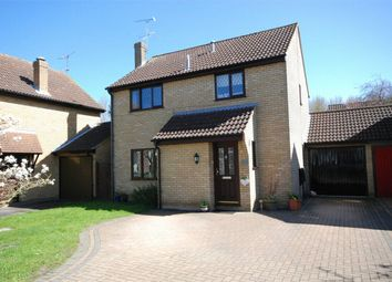 Thumbnail 4 bed link-detached house for sale in Heron Road, Kelvedon, Essex