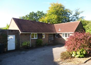 Thumbnail 1 bed detached bungalow to rent in Farnham Lane, Haslemere