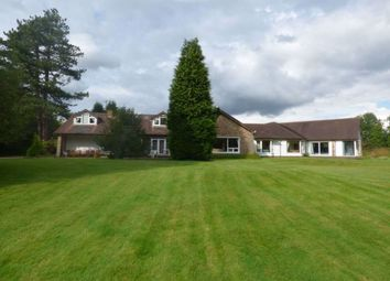 Thumbnail 6 bed bungalow to rent in Holt House, Mobb