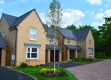 "Thumbnail 3 bedroom detached house for sale in ""Lullingstone"" at Bearscroft Lane, London Road, Godmanchester, Huntingdon"