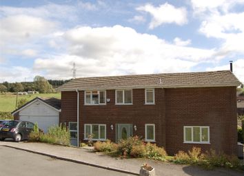 Thumbnail 4 bed detached house for sale in The Meadows, Grotton