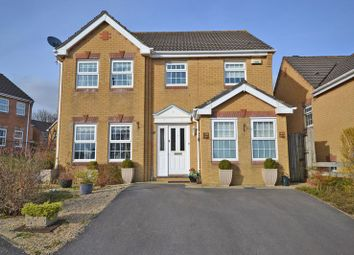 Thumbnail 4 bedroom detached house for sale in Superb Family House, Great Oaks Park, Newport