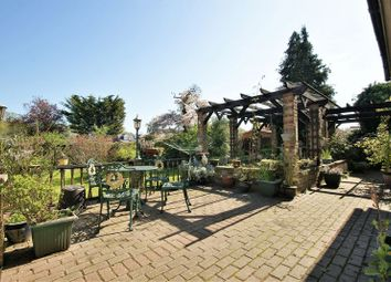 Thumbnail 4 bed detached bungalow for sale in Wood View, Grays