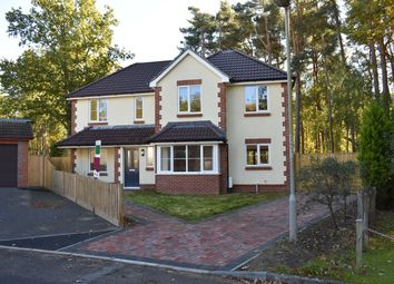 Thumbnail 4 bed detached house for sale in Sycamore Place, Stapehill, Wimborne