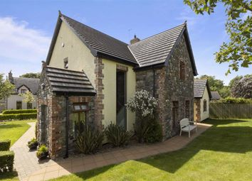 Thumbnail 4 bed detached house for sale in Chapel View, Annacloy, Co. Down