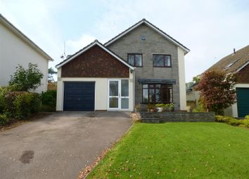 Thumbnail 3 bed detached house to rent in Clearview, Shirenewton, Chepstow