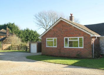 Thumbnail 3 bed bungalow to rent in Blendworth, Waterlooville