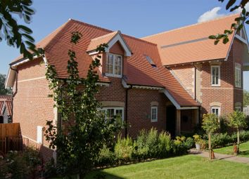 Thumbnail 4 bed detached house for sale in Maypole Meadow, Rickinghall, Diss