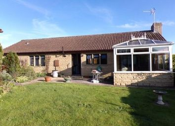 Thumbnail 3 bedroom detached bungalow to rent in St. Michaels Gardens, South Petherton