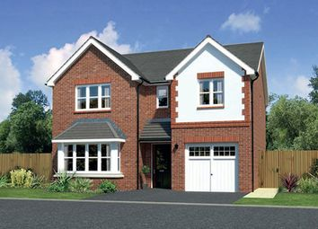 "Thumbnail 4 bedroom detached house for sale in ""Hampsfield"" at Ffordd Eldon, Sychdyn, Mold"