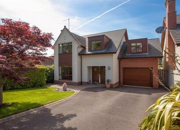 Thumbnail 4 bed detached house for sale in 8, Edinburgh Avenue, Holywood