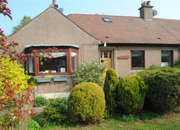 Thumbnail 4 bed semi-detached bungalow for sale in Castle Drive, Berwick-Upon-Tweed, Northumberland
