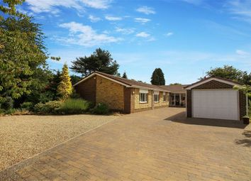 Thumbnail 6 bed detached bungalow for sale in Whinfell Road, Ponteland, Northumberland