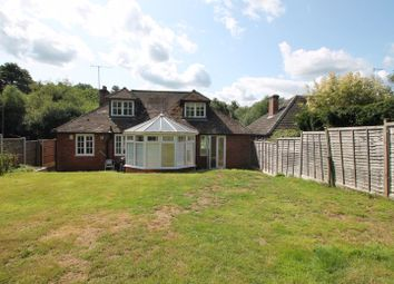 Thumbnail 4 bed detached bungalow to rent in Dorking Road, Gomshall, Guildford