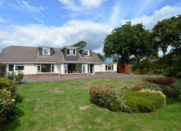 Thumbnail 5 bed property for sale in Chestnut Avenue, Barton On Sea, New Milton