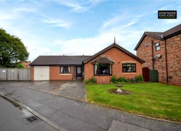 Thumbnail 3 bed bungalow for sale in Holly Close, Stallingborough