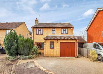 Thumbnail 4 bed detached house for sale in The Elms, Hertford, Herts