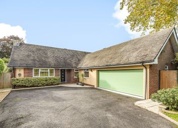 4 bed detached bungalow for sale in Weavers Close, Easebourne, Midhurst GU29