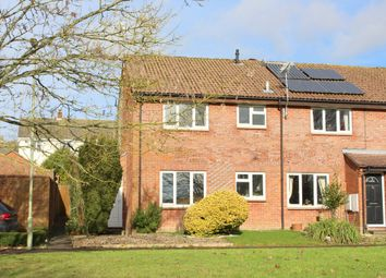 Thumbnail 1 bedroom semi-detached house to rent in Appledown Close, Alresford