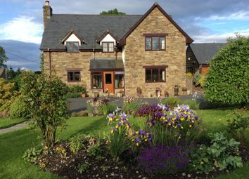 Thumbnail 4 bed detached house for sale in Hay On Wye 5 Miles, Painscastle