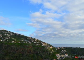 Thumbnail Land for sale in Land Ribeira Brava, Ribeira Brava (Parish), Ribeira Brava, Madeira Islands, Portugal