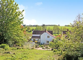 Thumbnail 3 bed detached house for sale in The Common, Shotesham All Saints, Norwich, Norfolk